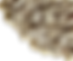 Semilla Girasol Esquina 4-cutout.png