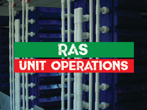 Unit operations for the recirculating aquaculture systems for Mud Crab Aquaculture