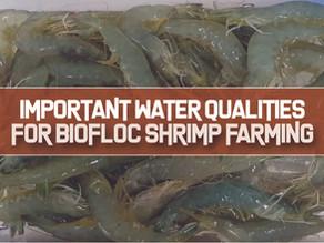 Important Water Parameters for Indoor Biofloc Shrimp Farming | Aquaculture Technology