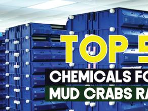 Top 5 Chemicals for Mud Crab Recirculating Aquaculture Systems | Aquaculture Technology