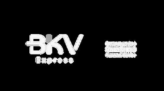 formatos logo bkv+samsung-03.png