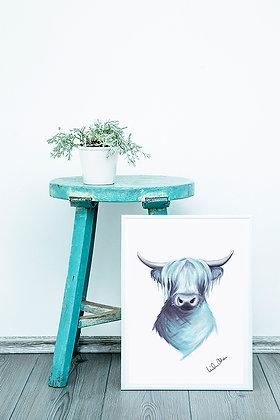 highland cattle - art print