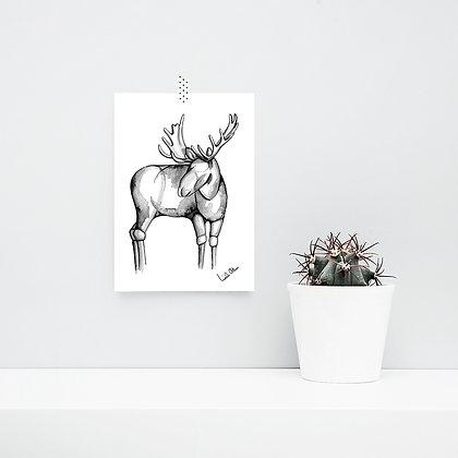 moose sketch- art print