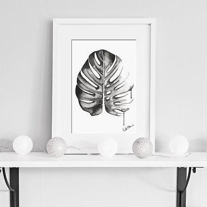 Monstera - art print