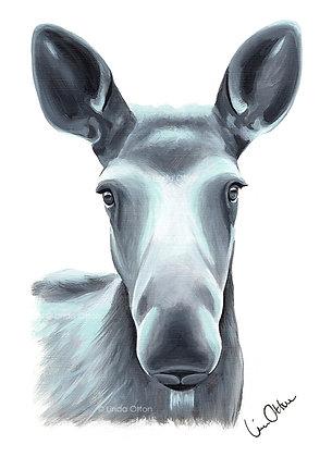 Moose head - art print