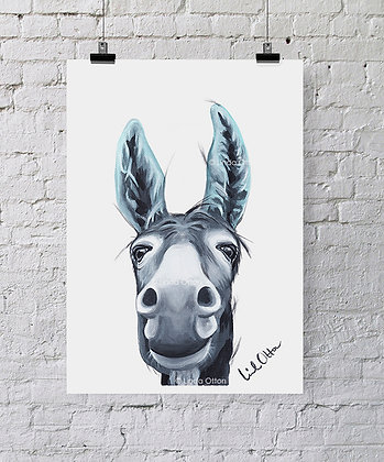 Blue eared donkey - art print