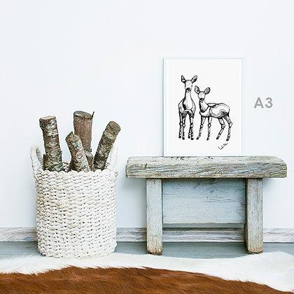 two deer - art print