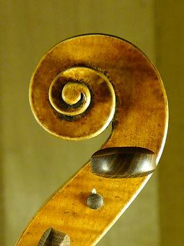 volûte violoncelle Montagnana 1740