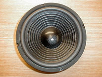 New-10-woofer-gold.jpg