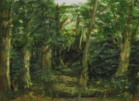 Cyfarthfa Wood