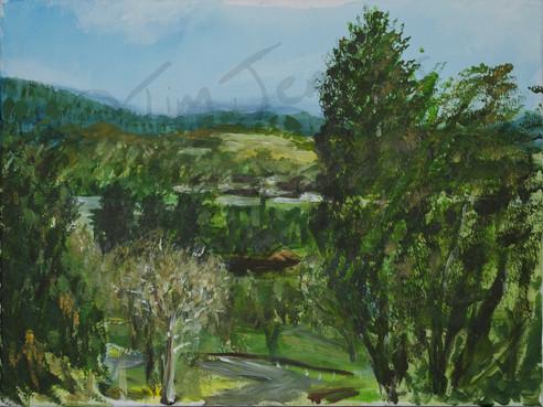 View From Cyfarthfa