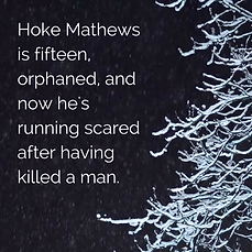 Hoke Mathews is fifteen, orphaned, and n