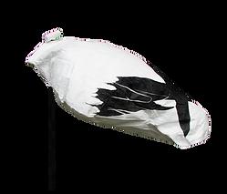 Snow_Goose_headless-_SG_720x.png