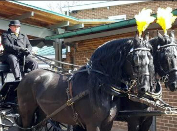 1st-choice-traditional-funeral-carriage