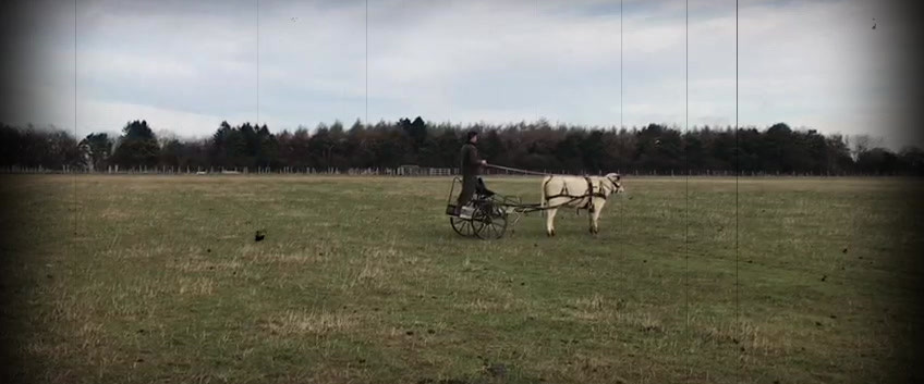 More training of cow and cart.mp4