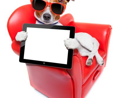 A Website? It's your digital shop window…
