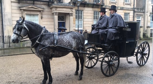 1ST-CHOICE-HORSE-AND-CARRIAGE.jpeg