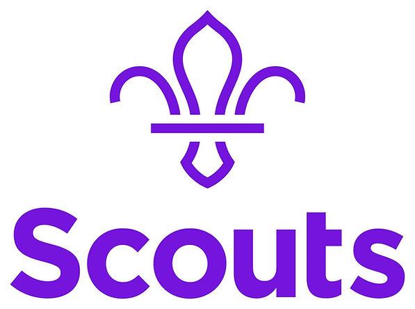 Scouts Logo.jpg