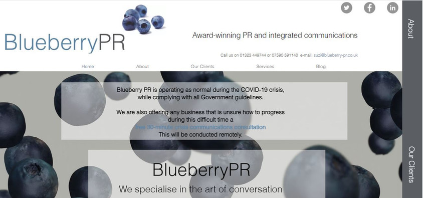 Blueberry PR.JPG