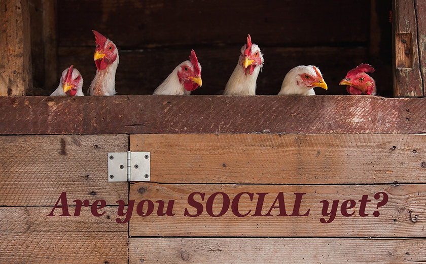 Are you Social.jpg