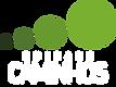 Logo Caminhos Vertical Verde - BRANCO.png