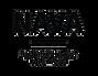 logo_nava_w.png