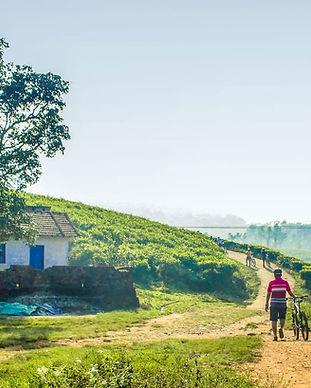 Village-walk.jpg