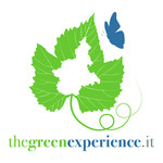 green_experience.jpg