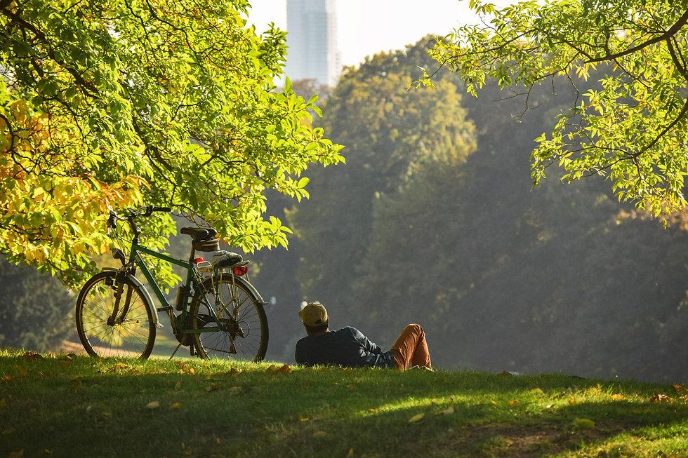 brussels park.jpg