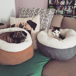 Donut bed Lesley Gevers 2015 12