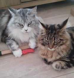 Oonah en Jakko