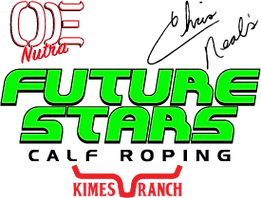 FutureStarslogo_2019.png