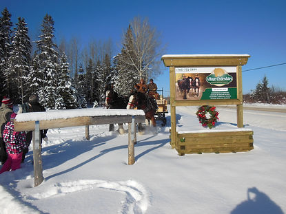 Sleigh rides at Village Clydesdales - 2103 Village Road, Astorville, Ontario