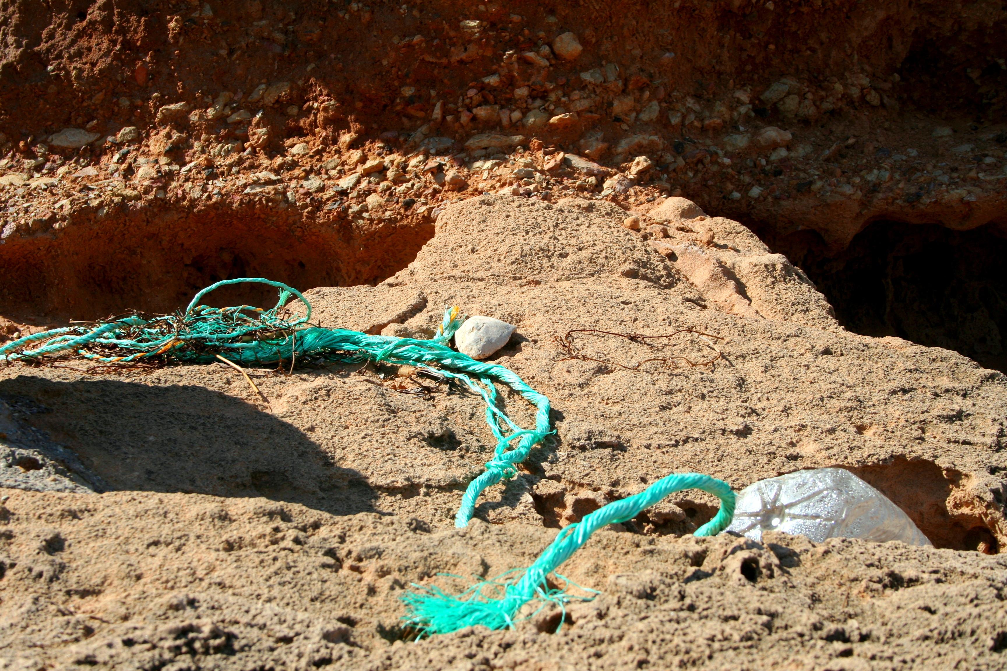 Limpieza de playa El Perelló