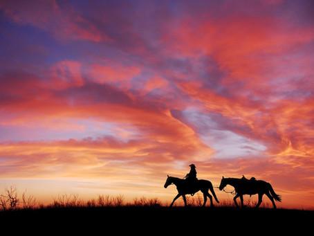 13 Wild West Wilderness Encounters