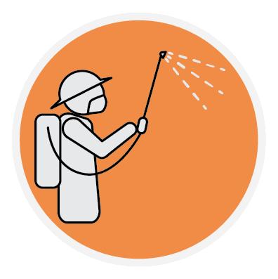 Indoor Residual Spraying