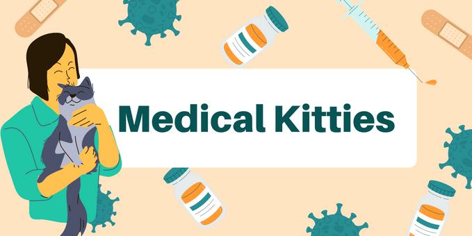 ACCT Medical Kitties
