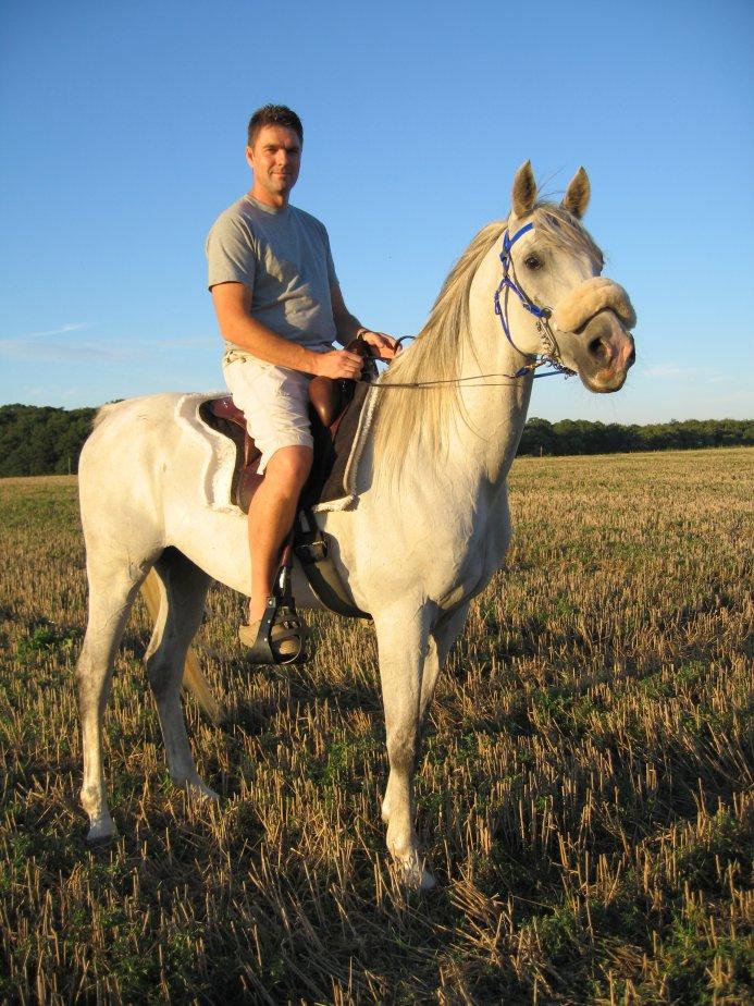heste 048_medium