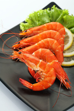Cooked Shrimp Products