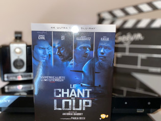 Test Blu-ray 4K : Le Chant du Loup