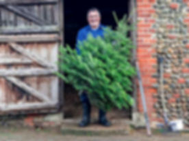 Selling Christmas trees. Portrait of Les