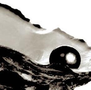 6-18-20 Black pearl image.jpeg