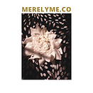 6-19-21 MERELYME.CO logo.png