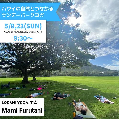 ハワイの自然とつながる サンデーパークYOGA 5月開催分(C292105)