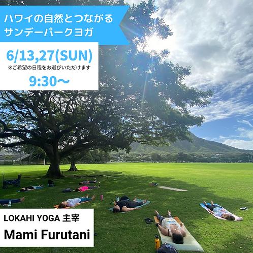 ハワイの自然とつながる サンデーパークYOGA 6月開催分(C292106)
