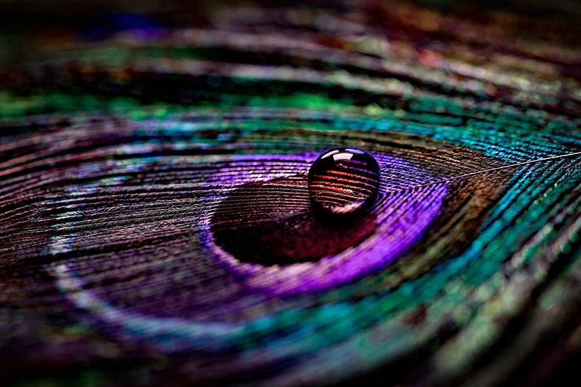 colour-6185159_1920.jpg