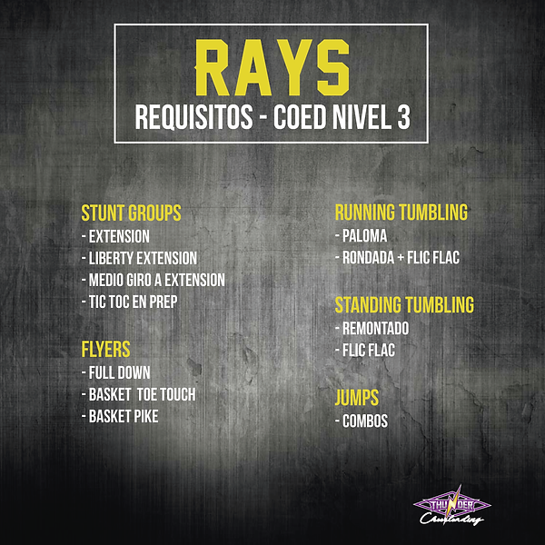 Requisitos Rays-01.png