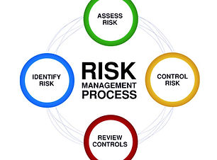 Risk-Management_edited.jpg