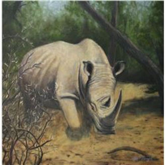 Rhino Ryan Perry.jpg
