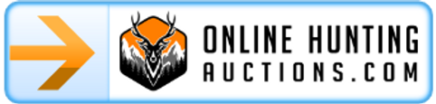 Online Auction 2021 Link.png